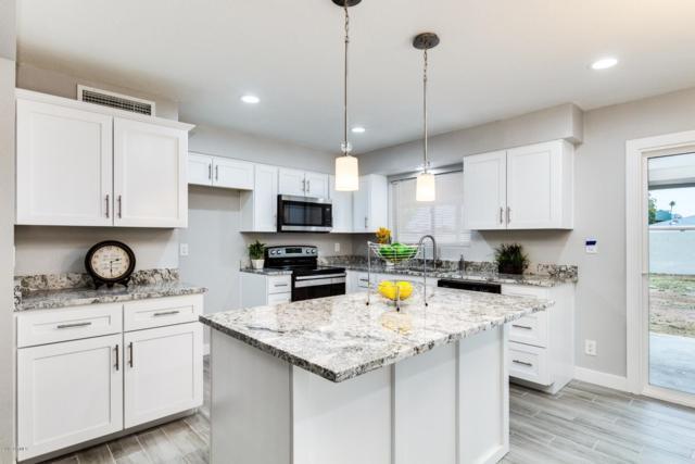 1513 W Vine Avenue, Mesa, AZ 85202 (MLS #5883870) :: RE/MAX Excalibur