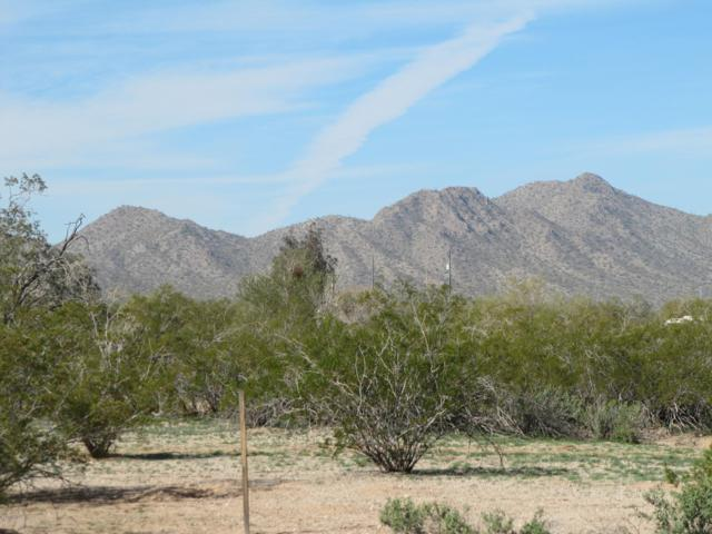 0 S Amanda Drive, Maricopa, AZ 85139 (MLS #5883874) :: Conway Real Estate