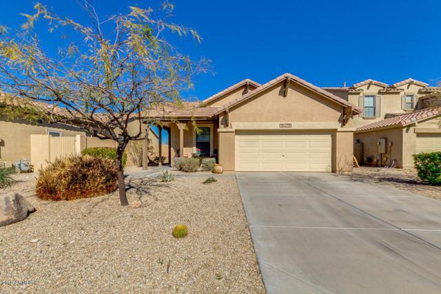 18406 W Paseo Way, Goodyear, AZ 85338 (MLS #5883898) :: Cindy & Co at My Home Group