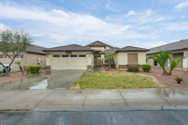 11262 W Chase Drive, Avondale, AZ 85323 (MLS #5883942) :: The Luna Team