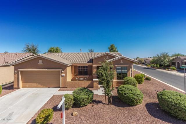 42400 W Heavenly Place, Maricopa, AZ 85138 (MLS #5883966) :: Arizona 1 Real Estate Team