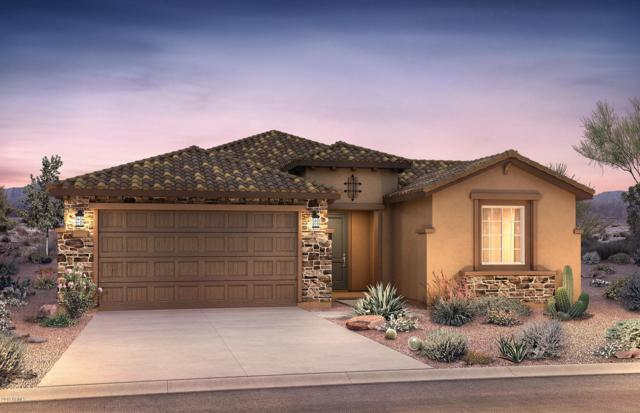 20548 N 274TH Lane, Buckeye, AZ 85396 (MLS #5883969) :: CC & Co. Real Estate Team