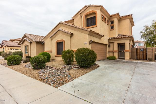 12067 N 66TH Avenue, Glendale, AZ 85304 (MLS #5884008) :: Cindy & Co at My Home Group