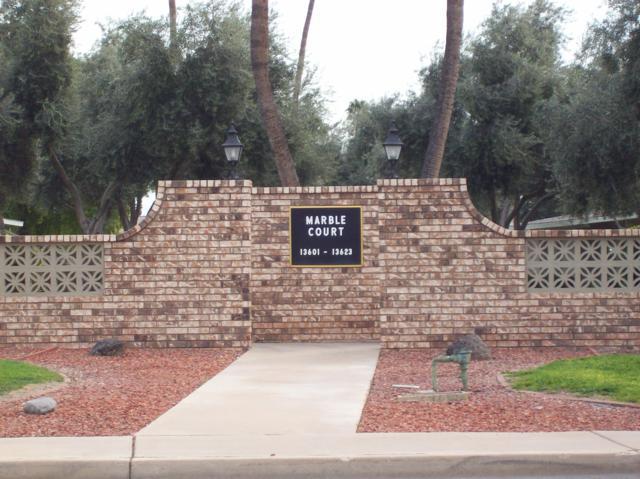 13621 N 111TH Avenue, Sun City, AZ 85351 (MLS #5884052) :: Devor Real Estate Associates