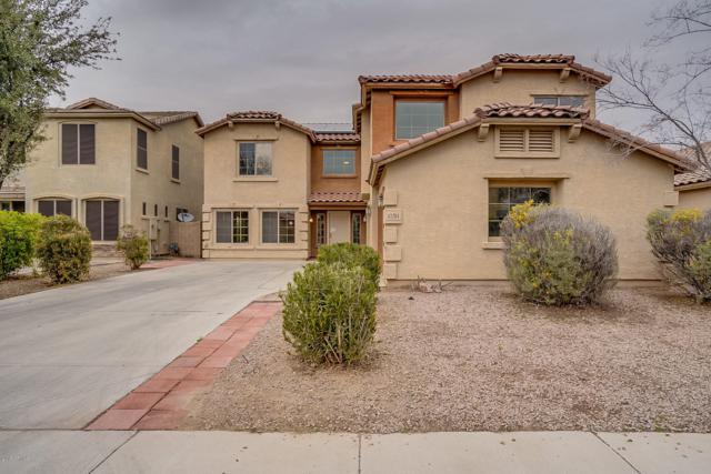 43264 W Wallner Drive, Maricopa, AZ 85138 (MLS #5884053) :: Yost Realty Group at RE/MAX Casa Grande