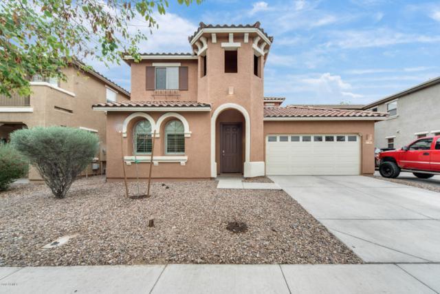 3919 E Claxton Avenue, Gilbert, AZ 85297 (MLS #5884078) :: Relevate | Phoenix
