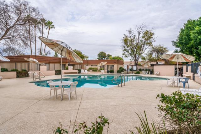 1621 E Dunbar Drive E, Tempe, AZ 85282 (MLS #5884088) :: Kepple Real Estate Group