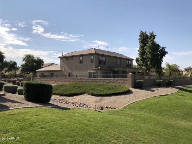 19816 E Reins Road, Queen Creek, AZ 85142 (MLS #5884096) :: The Pete Dijkstra Team
