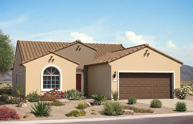 5788 W Autumn Vista Drive, Florence, AZ 85132 (MLS #5884112) :: Yost Realty Group at RE/MAX Casa Grande