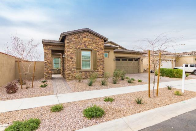 10741 E Palladium Drive, Mesa, AZ 85212 (MLS #5884122) :: Yost Realty Group at RE/MAX Casa Grande