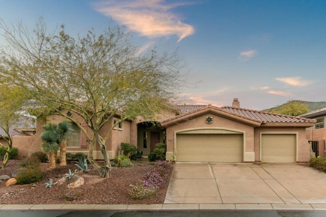 2238 W Hazelhurst Drive, Anthem, AZ 85086 (MLS #5884133) :: Revelation Real Estate
