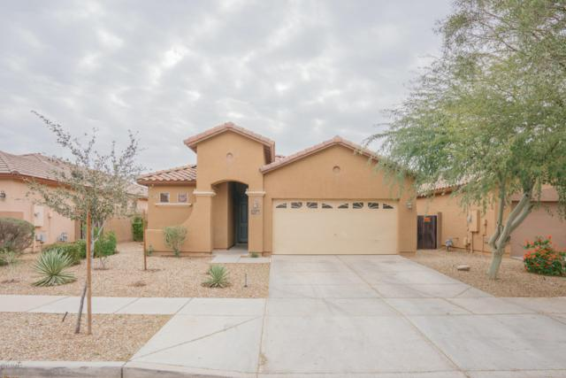 8731 W Pioneer Street, Tolleson, AZ 85353 (MLS #5884153) :: CC & Co. Real Estate Team