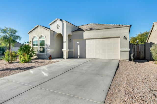 6328 S 251ST Drive, Buckeye, AZ 85326 (MLS #5884154) :: Devor Real Estate Associates