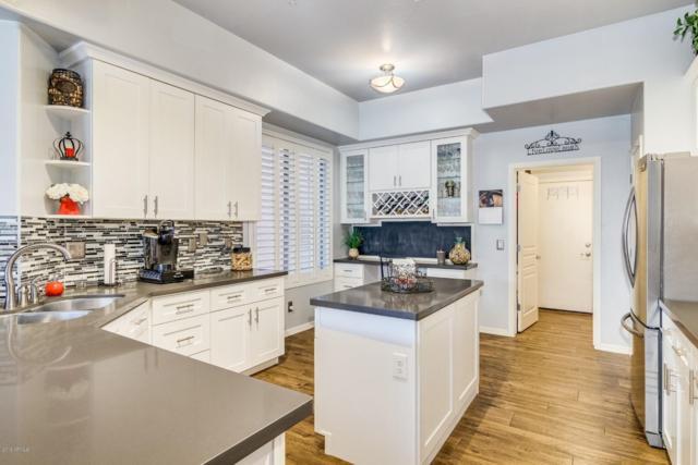 1454 W Marlin Drive, Chandler, AZ 85286 (MLS #5884156) :: Power Realty Group Model Home Center