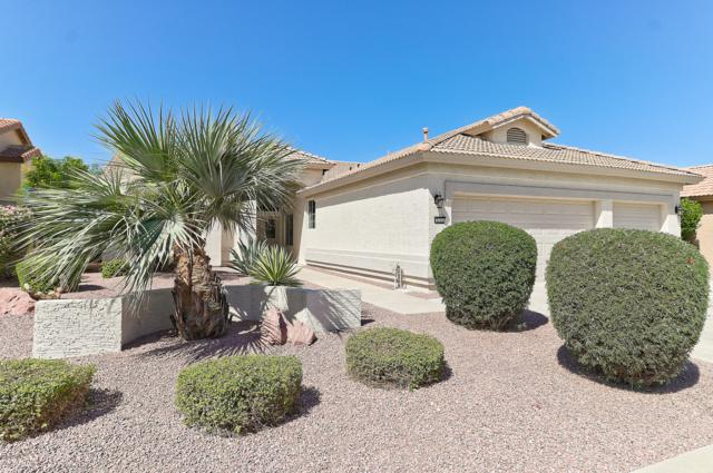 3174 N 150TH Drive, Goodyear, AZ 85395 (MLS #5884185) :: CC & Co. Real Estate Team