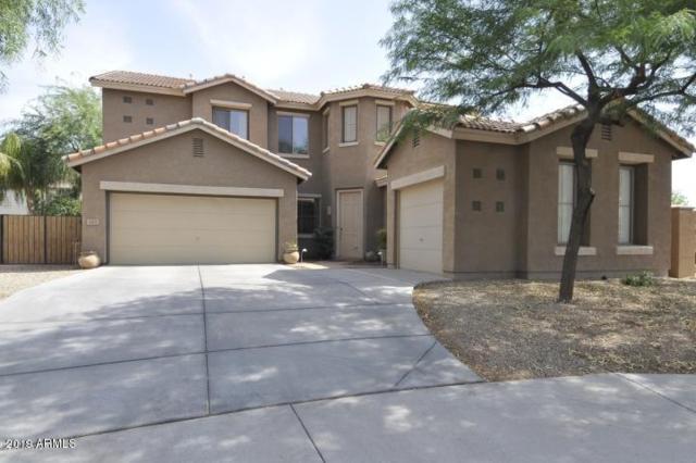 163 W Raven Drive, Chandler, AZ 85286 (MLS #5884194) :: The Kenny Klaus Team