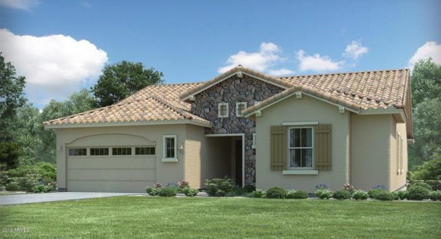10590 W Bronco Trail, Peoria, AZ 85383 (MLS #5884201) :: Kepple Real Estate Group