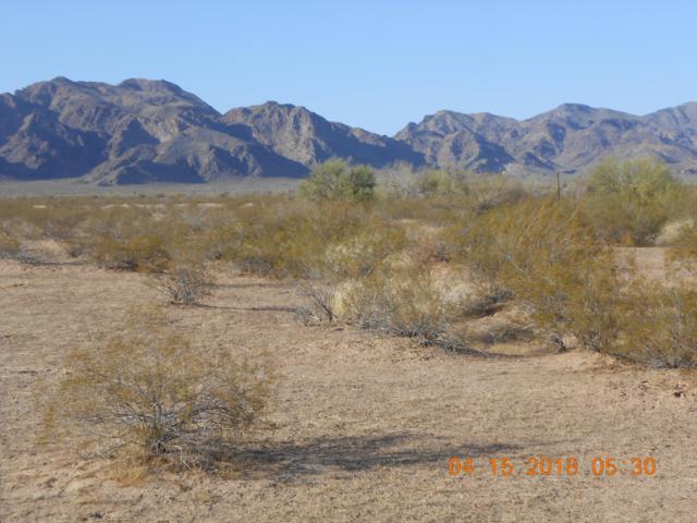 72195 Salome Road, Salome, AZ 85348 (MLS #5884224) :: Yost Realty Group at RE/MAX Casa Grande