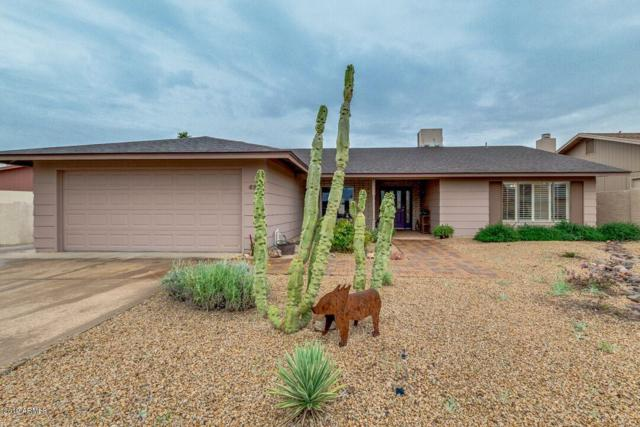 4747 E Pawnee Circle, Phoenix, AZ 85044 (MLS #5884236) :: Kepple Real Estate Group