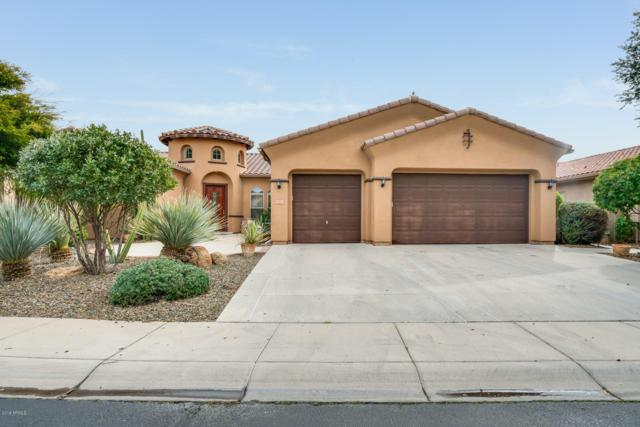 29487 N 120TH Lane, Peoria, AZ 85383 (MLS #5884237) :: Devor Real Estate Associates