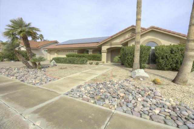 14218 W Parkland Drive, Sun City West, AZ 85375 (MLS #5884246) :: The Property Partners at eXp Realty