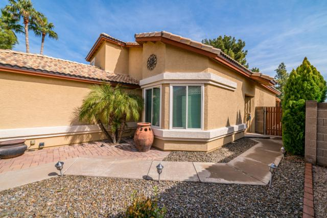 18813 N 43RD Place N, Phoenix, AZ 85050 (MLS #5884257) :: Yost Realty Group at RE/MAX Casa Grande