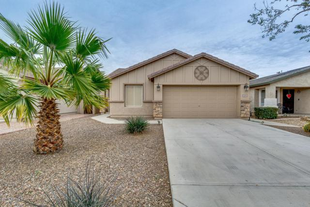 4896 E Meadow Mist Lane, San Tan Valley, AZ 85140 (MLS #5884310) :: Yost Realty Group at RE/MAX Casa Grande