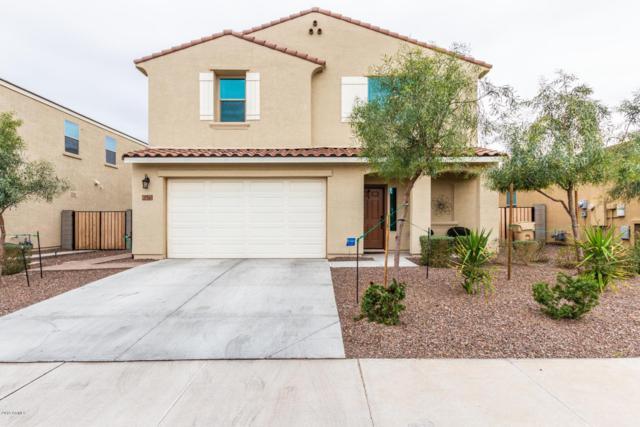 21361 W Holly Street, Buckeye, AZ 85396 (MLS #5884315) :: Devor Real Estate Associates