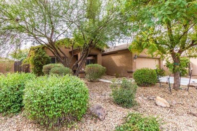 605 E Whyman Avenue, Avondale, AZ 85323 (MLS #5884319) :: The Luna Team