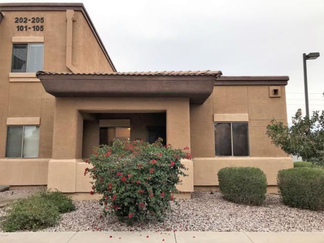 537 S Delaware Drive #101, Apache Junction, AZ 85120 (MLS #5884333) :: Yost Realty Group at RE/MAX Casa Grande