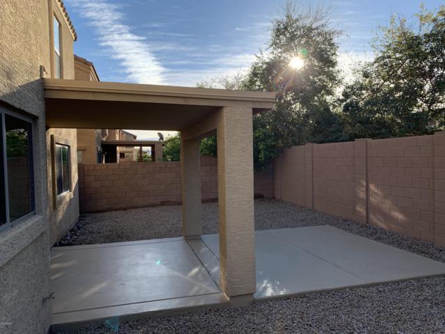 7627 W Charter Oak Road, Peoria, AZ 85381 (MLS #5884343) :: Kepple Real Estate Group