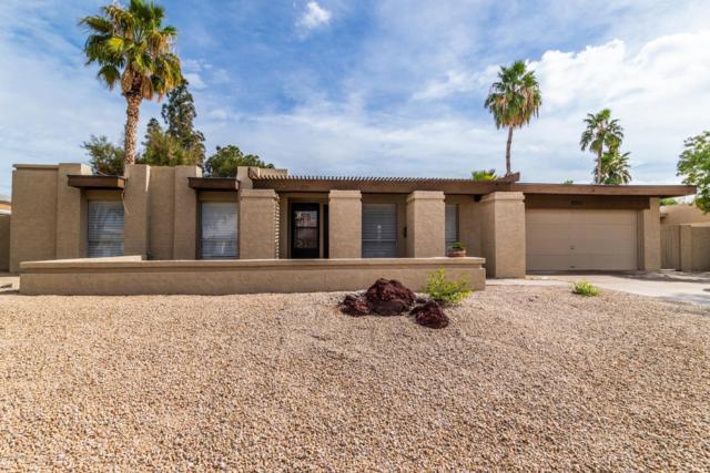 6511 S Hazelton Lane, Tempe, AZ 85283 (MLS #5884350) :: Yost Realty Group at RE/MAX Casa Grande