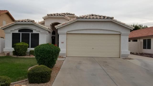 9541 W Mary Ann Drive, Peoria, AZ 85382 (MLS #5884362) :: Devor Real Estate Associates
