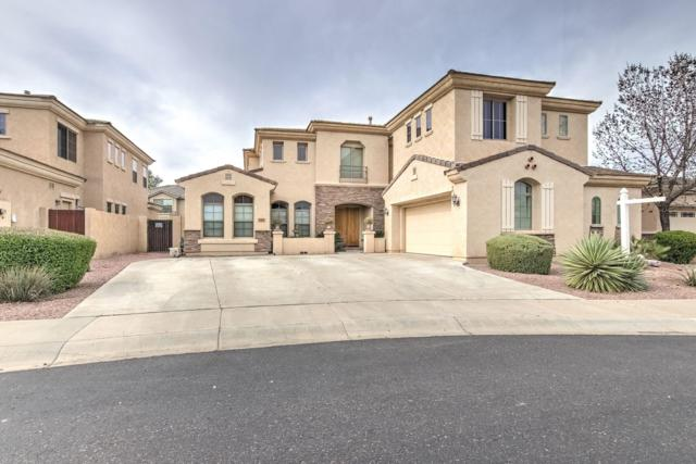 2704 S Four Peaks Way, Chandler, AZ 85286 (MLS #5884363) :: Kepple Real Estate Group