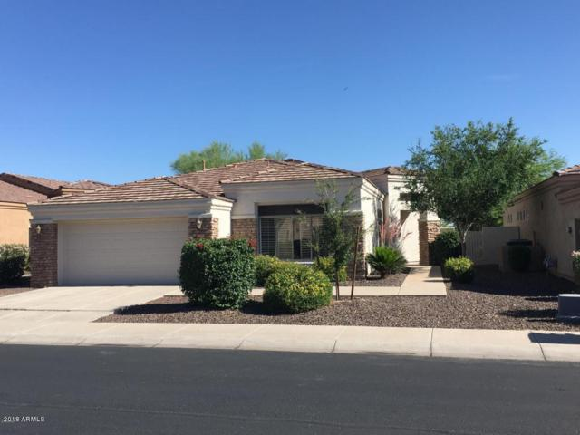 2018 E Valencia Drive, Phoenix, AZ 85042 (MLS #5884364) :: The Everest Team at My Home Group