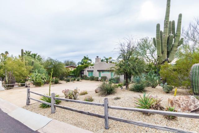 13251 N Victor Hugo Avenue, Phoenix, AZ 85032 (MLS #5884386) :: Devor Real Estate Associates