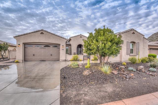 12752 W Calle De Pompas, Peoria, AZ 85383 (MLS #5884388) :: Devor Real Estate Associates