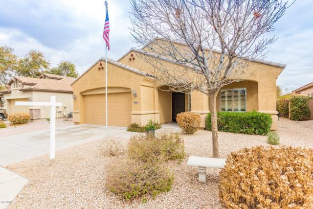 4611 S Marron, Mesa, AZ 85212 (MLS #5884390) :: Kepple Real Estate Group