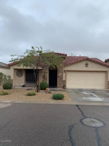 2715 S Conestoga Road, Apache Junction, AZ 85119 (MLS #5884409) :: Yost Realty Group at RE/MAX Casa Grande