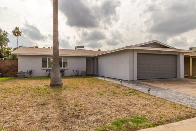 1019 W Halstead Drive, Phoenix, AZ 85023 (MLS #5884427) :: Devor Real Estate Associates