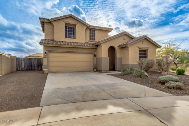 11451 E Starkey Avenue, Mesa, AZ 85212 (MLS #5884434) :: Yost Realty Group at RE/MAX Casa Grande