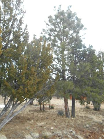 2787 Chandelle Lane, Overgaard, AZ 85933 (MLS #5884468) :: Riddle Realty Group - Keller Williams Arizona Realty