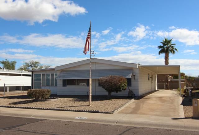 17225 N 66TH Avenue, Glendale, AZ 85308 (MLS #5884486) :: Yost Realty Group at RE/MAX Casa Grande
