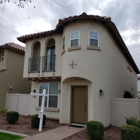 1081 S Reber Avenue, Gilbert, AZ 85296 (MLS #5884495) :: Yost Realty Group at RE/MAX Casa Grande