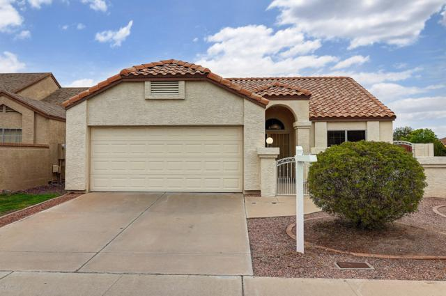 6002 W Mescal Street, Glendale, AZ 85304 (MLS #5884512) :: The Ford Team