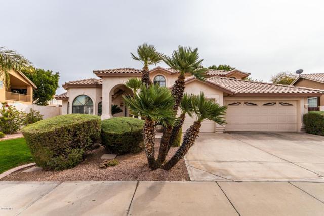 23837 N 58TH Drive, Glendale, AZ 85310 (MLS #5884519) :: Yost Realty Group at RE/MAX Casa Grande