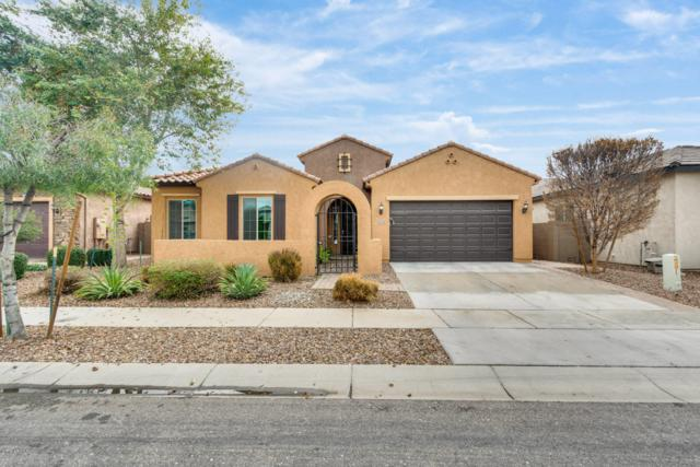 3551 E Ivanhoe Street, Gilbert, AZ 85295 (MLS #5884534) :: Door Number 2