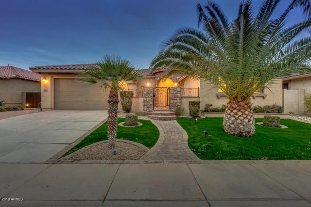 3421 E Virgil Drive, Gilbert, AZ 85298 (MLS #5884547) :: Door Number 2