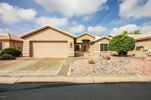 3242 N 146th Drive, Goodyear, AZ 85395 (MLS #5884557) :: Cindy & Co at My Home Group