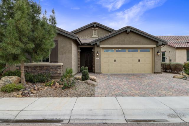 261 E Home Improvement Way, Chandler, AZ 85249 (MLS #5884590) :: The W Group